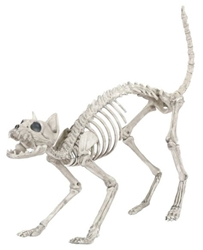 Skeleton Animal - Life-size Cat skeleton Target, Crazy Bonez, Action Figures, 2016|Color~bone, halloween