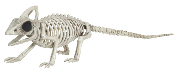 Skeleton Animal - Life-size Lizard skeleton Target, Crazy Bonez, Action Figures, 2016|Color~bone, halloween