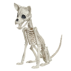 Skeleton Animal - Life-size Chihuahua Target, Hyde and Eek! Boutique, Action Figures, 2017|Color~bone, horror, halloween