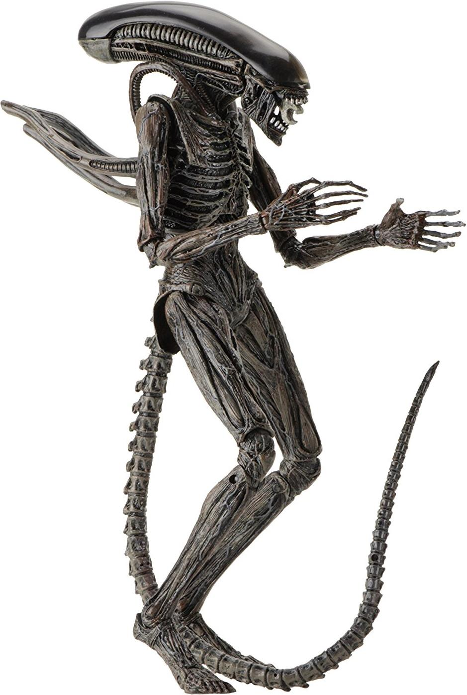 NECA Alien Covenant 10 inch Figure - Xenomorph NECA, Alien Covenant, Action Figures, 2017, scifi, movie