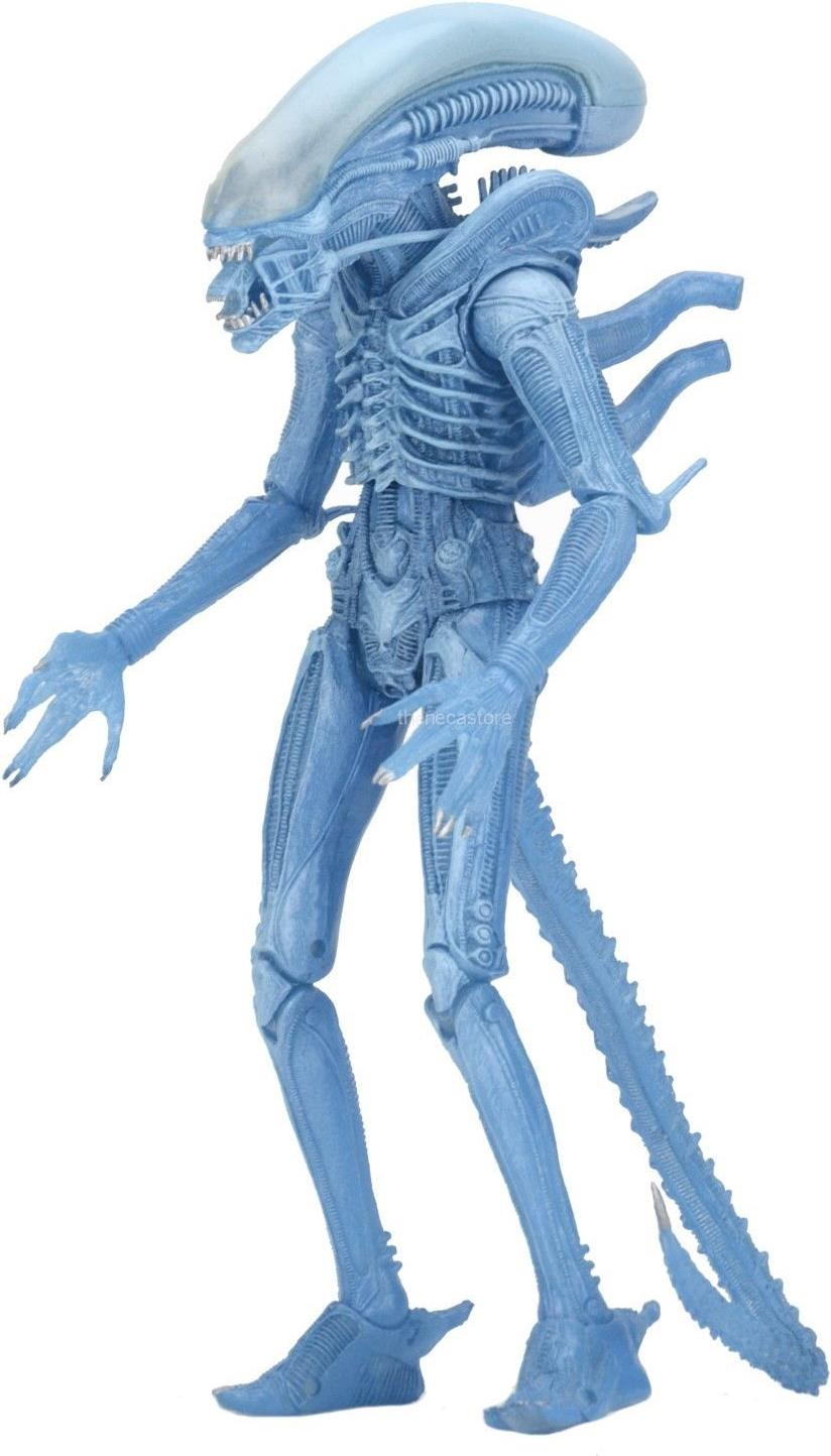 NECA Alien 9 inch Figure - Warrior Alien (blue) NECA, Alien, Action Figures, 2017, scifi, movie